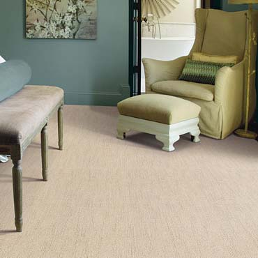 Caress Carpet by Shaw | New York City, NY